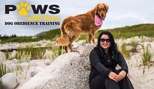 Certified Dog Trainer- Private Classes HRM