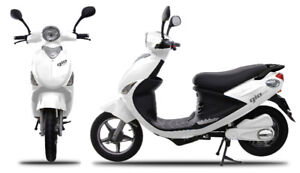 Windsor E-Bike and Powersport Business and Inventory for Sale