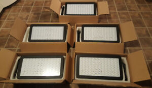 Five VERY BRIGHT LED grow lights, great garden setup, 800w