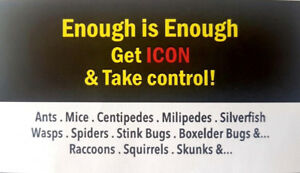 ICON PEST CONTROL & WILDLIFE REMOVAL