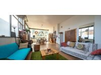 Huge Double in Friendly Warehouse Conversion with Garden