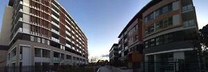 Spacious Room  in Brand New Apartment Parramatta Parramatta Area Preview