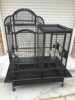 Large Bird Cage Tallai Gold Coast City Preview