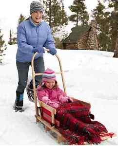 L.L. Bean Kids' Pull Sled & Cushion Set with Push Handle, Large