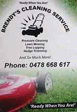All kinds of cleaning.. yard maintenance. .rubbish removal Burleigh Waters Gold Coast South Preview