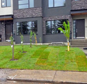 Best sod installation and landscaping services London Ontario image 9