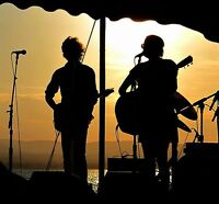 The Dynamic Duo - live band for hire for any event