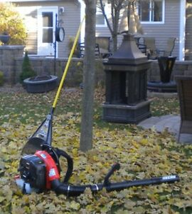 Fall Clean-ups by Local Property Care Co. Peterborough Peterborough Area image 4