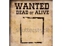 Wanted dead or alive bikes ,quad,pits ,cars !!!