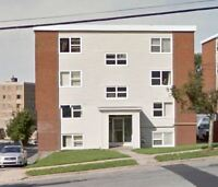 Renovated Units in Great Halifax Location.  On Bus Routes