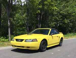 2002 Ford Mustang Coupé (2 portes) Décapotable