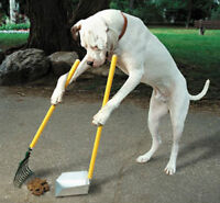 Pooper Scoopers to the Rescue!