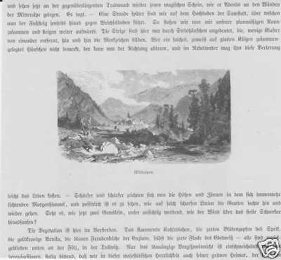 Wildalpen Salzatal Steiermark HOLZSTICHE von 1880