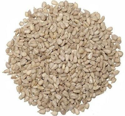 8KG WILD BIRD QUALITY SUNFLOWER HEARTS HIGH ENERGY SOURCE