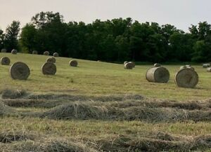4x4.5 Round Bales For Sale
