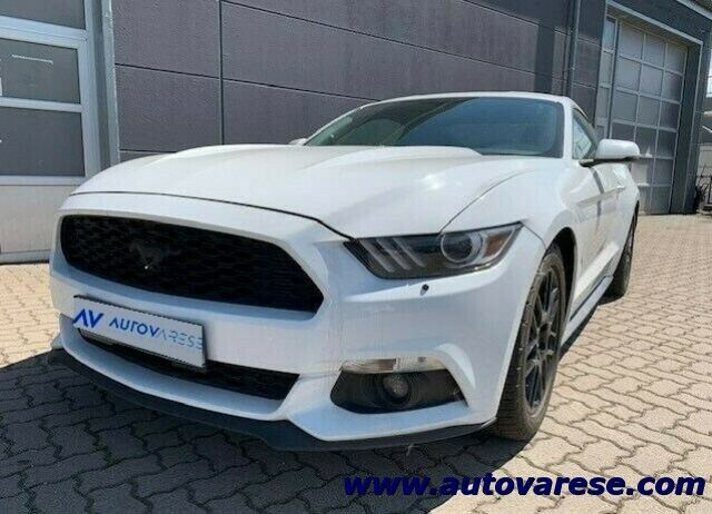 FORD Mustang Fastback 2.3 EcoBoost aut. CARFAX