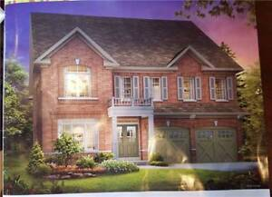 Executive 4 Bed Detached Home in Brampton