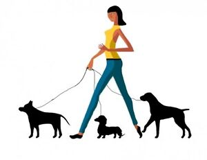 Promeneuse de chien - dog walking service
