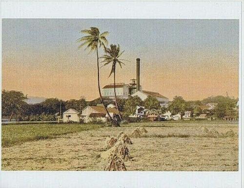 "WAIPAHU SUGAR MILL 1905? 8.5x11""HAND COLORED B&W TO GICLEE PHOTO"