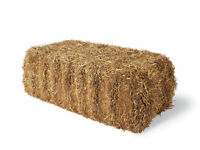 Hay / straw bale and other equestrian & yard transportation, storage and delivery. South hampshire.