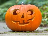 HALLOWEEN TRANSFER LESSONS Belfast from £15 per/hr
