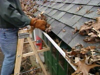Cleaning Services. GUTTERS and WINDOWS