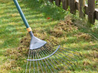 Raking lawns and spring cleanup