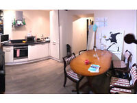 1 Bedroom flat to rent for championship final (price negotiable)