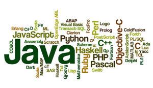 Experienced computer science tutor Python JAVA C C++ Web Dev C#