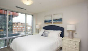 Fantastic Apt for Rent ! (Halifax Downtown) Available JULY 1
