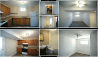 newly renovated 2 bedroom basement apartment for rent.