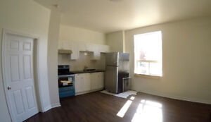 Gorgeous, Newly-Renovated 1 Bedroom for Rent near the Waterfront