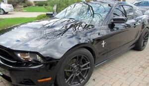 2010 Ford Mustang 6 cylinder Coupe (2 door)