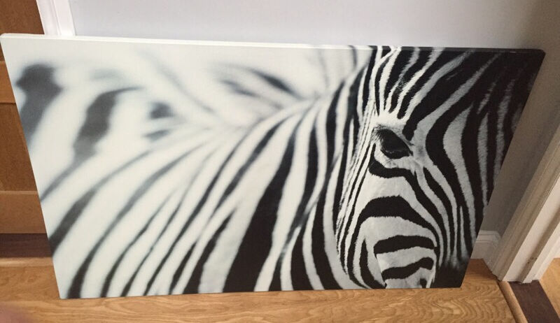 ikea large zebra print canvas in westbury on trym bristol gumtree. Black Bedroom Furniture Sets. Home Design Ideas