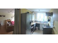 I am looking for a professional preferably working full time to rent 1 room in 2 bedroom flat.