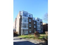 """Amazing Large Bright and Sunny 1 Bedroom Flat in Whalley Range - Off Road Parking - Tranquil """""""