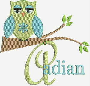 OWL-MACHINE-EMBROIDERY-DESIGNS-FONTS-NEW-PES-CD-Brother-Bernina-Singer