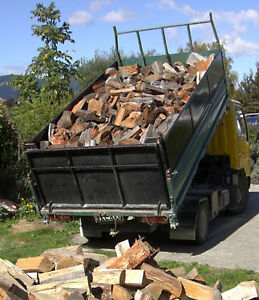 For sale now Windsor firewood $238 1 yr dry split 402-3024