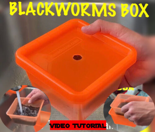 Live Blackworms Container Box Keeper Stackable Discus Altums Tropical Fish