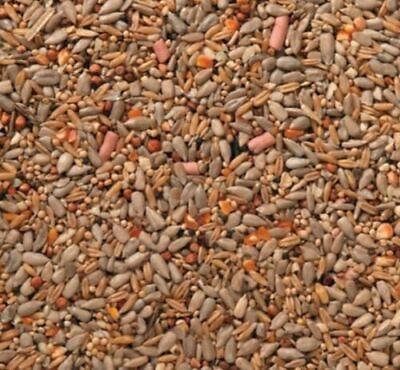 Johnston & Jeff Premium Wild Bird Seed - Wheat Free with Suet Food Mix - 20kg