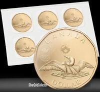 RCM- $1 Circulation 5-Pack - Lucky Loonie (2014)