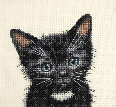 BLACK CAT KITTEN white bib, Full counted cross stitch kit + all materials -