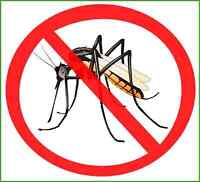Working partner needed for Mosquito Business