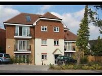 Modern two bed two bath Garden Flat in Beckenham. (Available now)