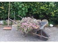 Old vintage wheelbarrow garden feature