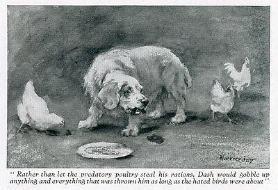 CLUMBER SPANIEL LABRADOR DOG ANTIQUE PRINT  Dash & Seraglio by Florence Jay 1929