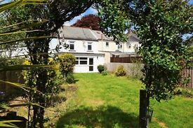 Traditional Cornish Miners Cottage - excellent perm home, holiday home &/or investment opportunity