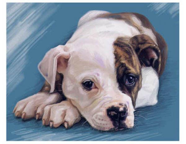 artav American Bulldog Art Print on Watercolor Paper