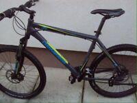 Men's Large Hybrid Mountain Bike (Double disk TEKTRO) not specialized, Carrera, trek, Btwin