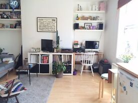 Lovely, bright 1 bedroom flat for rent near London Fields